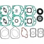 Комплект прокладок двигателя с сальниками для снегохода  Ski-Doo