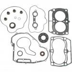 Набор прокладок двигателя с сальниками для квадроциклов  Polaris