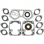 Комплект прокладок двигателя и сальников   для снегоходов Arcic Cat 570