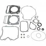 Комплект  прокладок двигателя полный (с сальниками) для квадроцикла Polaris Sportsman 500