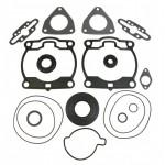 Комплект прокладок двигателя с сальниками снегохода Polaris 900